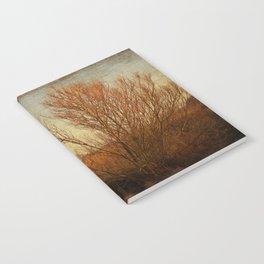 Orange winter Notebook