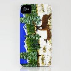 Beginning of winter iPhone (4, 4s) Slim Case
