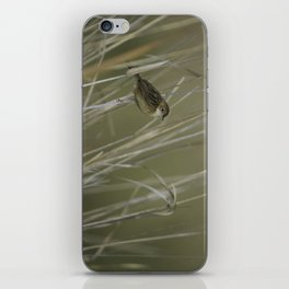 Little Brown Bird iPhone Skin