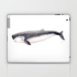 Pygmy sperm whale Laptop & iPad Skin