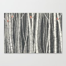 Birch trees Canvas Print