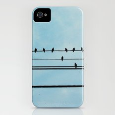 Birds on a Wire iPhone (4, 4s) Slim Case