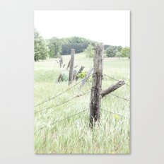 Old Fence Posts Canvas Print
