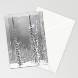 Winter 9 Stationery Cards