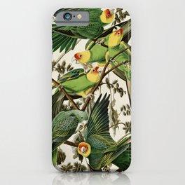 Carolina Parrot - John James Audubon's Birds of America Print iPhone Case