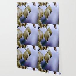 bellflower Wallpaper