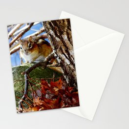 Chipmunk in the leaves Stationery Cards