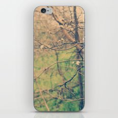 Ethyl iPhone & iPod Skin