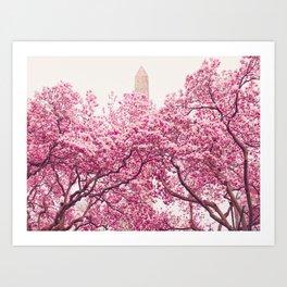 New York City - Central Park - Cherry Blossoms Art Print