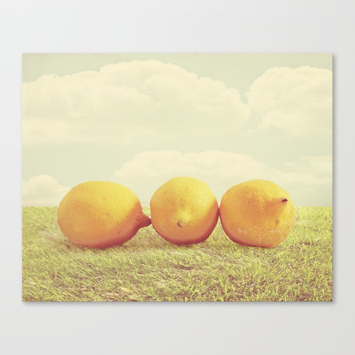 Lemongrass Canvas Print