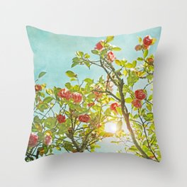 Pink Camellia japonica Blossoms and Sun in Blue Sky Throw Pillow