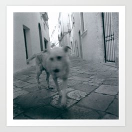 Perro callejero Art Print