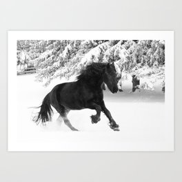 Friesian Mare Galloping in a Snowstorm Art Print
