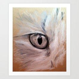 CatsEye Art Print