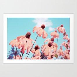 Sundancer Art Print