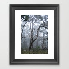 Kyeema Mist Framed Art Print