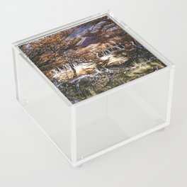 Fall in Patagonia, Argentina Acrylic Box