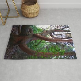 Giant Willow Rug