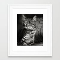 marley Framed Art Prints featuring Marley by Jessica Yakamna