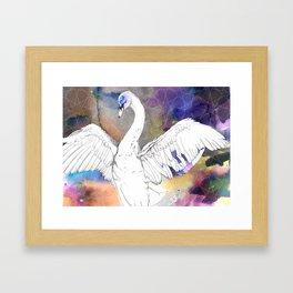 Virgo Swan Framed Art Print