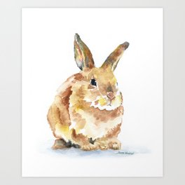 Bunny Rabbit Watercolor Painting - Woodland Animal Art Art Print