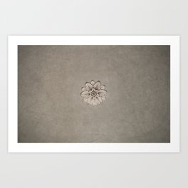 Flowers of Florence Art Print