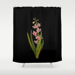 Hyacinthus Orientalis Mary Delany Delicate Paper Flower Collage Black Background Floral Botanical Shower Curtain