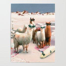 Funny Llama Beach Poster