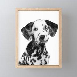 Dalmatian Puppy Framed Mini Art Print