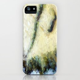 Butterfly Wings Abstract iPhone Case