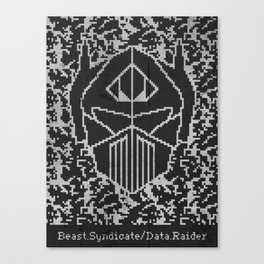 Data Raider Canvas Print