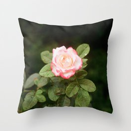 Flower Photography by Vo Danh Throw Pillow