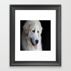 Great Pyrenees -Forest- Framed Art Print