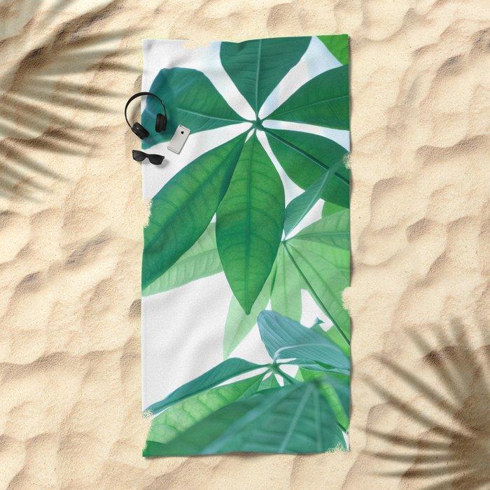 Pachira aquatica #1 #decor #art #society6 Beach Towel