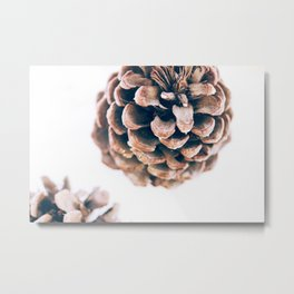 California Pine Cone Idyllwild Metal Print