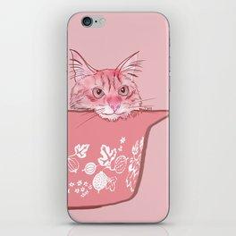 Cat in Bowl #1 iPhone Skin
