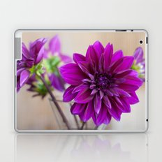 dahlias Laptop & iPad Skin