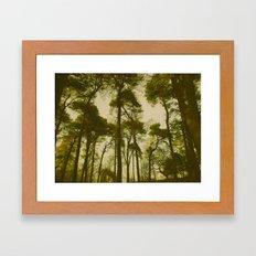 Creepy Trees Framed Art Print
