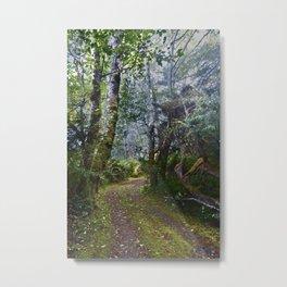 Bamfield Road Metal Print