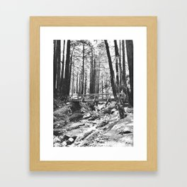 Forest and Creek Framed Art Print