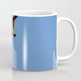 Seagull flying in the blue sky Coffee Mug