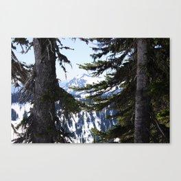 on Mount Rainier Canvas Print