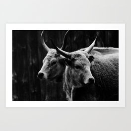 two headed beast Art Print
