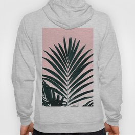 Tropical Green palm tree leaf blush pink gradient photography Hoody