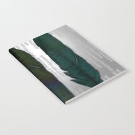 Feathers on silver Notebook
