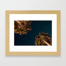 TROPICAL PALM Framed Art Print