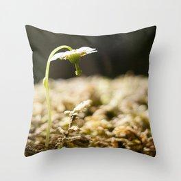 Shy Maiden Photography Print Throw Pillow