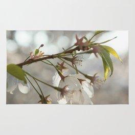 Japanese Cherry Blossoms Rug