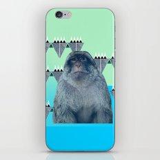 Barbary Ape iPhone & iPod Skin