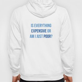 Is Everything Expensive Hoody